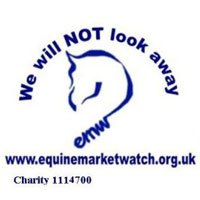 Equine Market Watch Sanctuaries