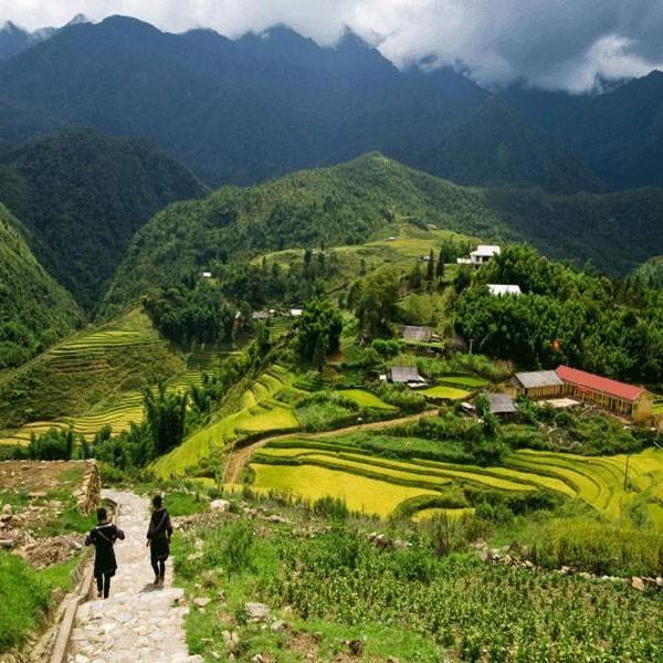 Vietnam Challenge - August 2018