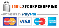 100percent secure shopping
